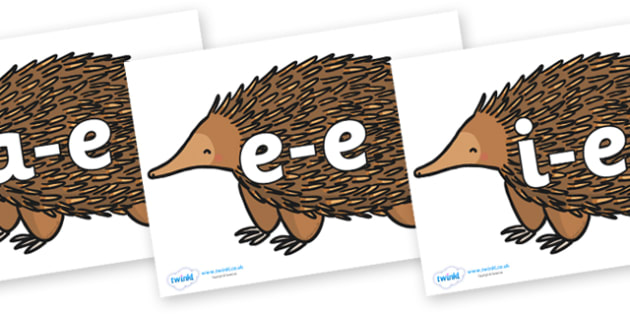 Modifying E Letters on Echidna - Modifying E, letters, modify, Phase 5, Phase five, alternative spellings for phonemes, DfES letters and Sounds