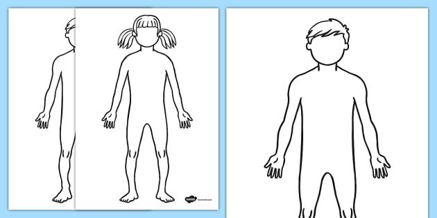 Body Outline Sheet - body outline, sheet, body, outline, human