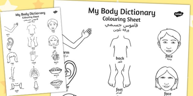 My Body Dictionary Colouring Sheet Arabic Translation - arabic
