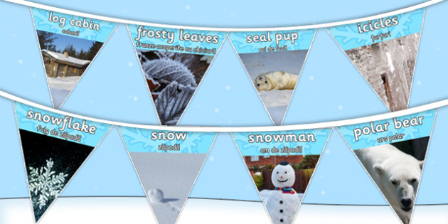Winter Photo Display Bunting Romanian Translation - romanian, winter, photo, display, bunting