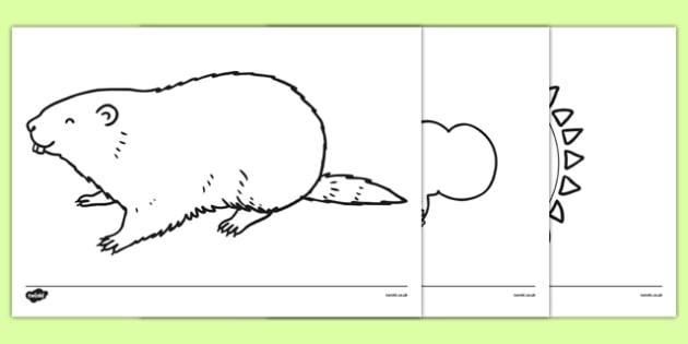 Groundhog Day Coloring Sheets - groundhog day, groundhog, tradition, celebration, coloring sheet