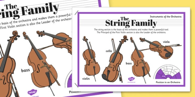 Orchestra Instruments String Family Poster - orchestra, instruments, string, family, poster