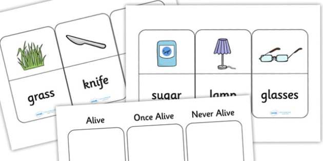 Alive Once Alive Never Alive Sorting Activity - living things, living things sorting activity, alive or not alive, alive or not alive sorting activity, ks2
