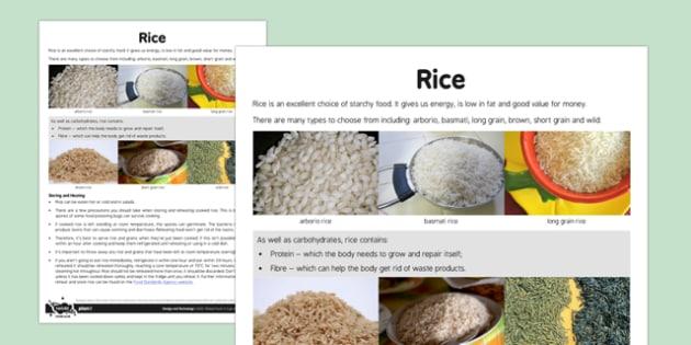 Global Food Adult Guidance Rice - global food, adult, guidance, rice