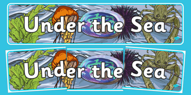 Under the Sea Display Banner