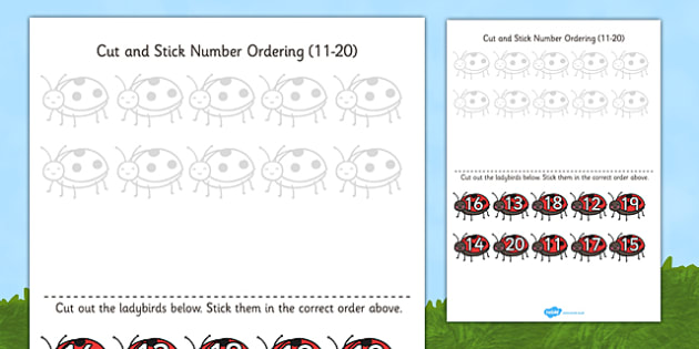 Minibeast Themed Cut and Stick Number Ordering Activity 11 20