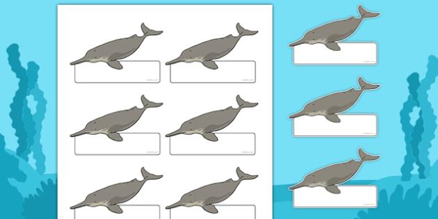 River Dolphin Self Registration Labels - river dolphin, self-registration, labels, display