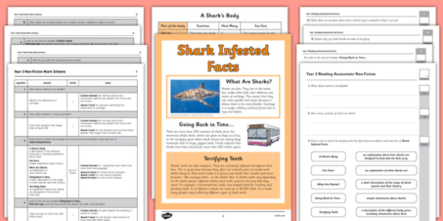 Year 3 Reading Assessment: Non-Fiction Term 1 - year 3, reading, assessment, non-fiction, english, ks2