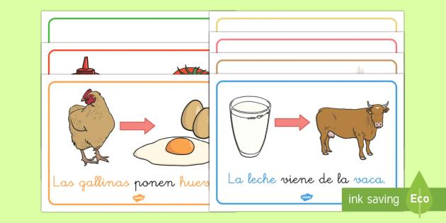 ¿De dónde viene la comida? Póster DIN A4-Spanish