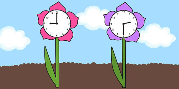 Clock Faces on Flowers - clock faces, flowers, time telling, watch faces