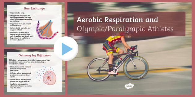 Aerobic Respiration and Paralympic Athletes PowerPoint