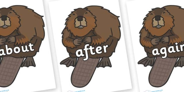 KS1 Keywords on Beavers - KS1, CLL, Communication language and literacy, Display, Key words, high frequency words, foundation stage literacy, DfES Letters and Sounds, Letters and Sounds, spelling