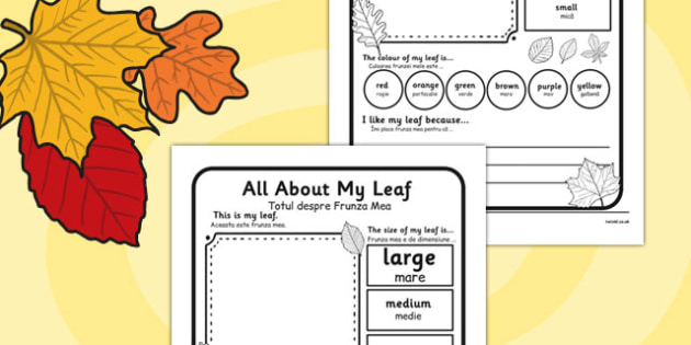 Leaf Worksheet Romanian Translation - romanian, leaf, worksheet, describe, compare