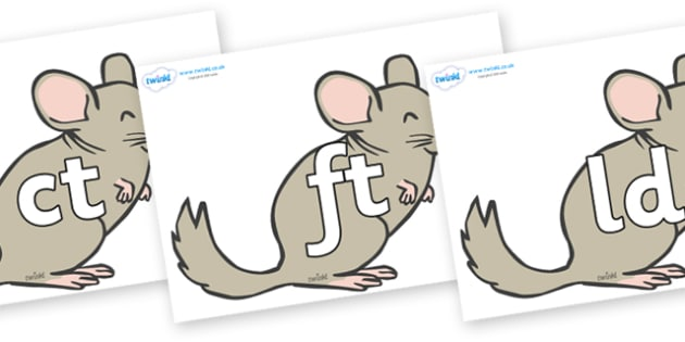 Final Letter Blends on Chinchillas - Final Letters, final letter, letter blend, letter blends, consonant, consonants, digraph, trigraph, literacy, alphabet, letters, foundation stage literacy