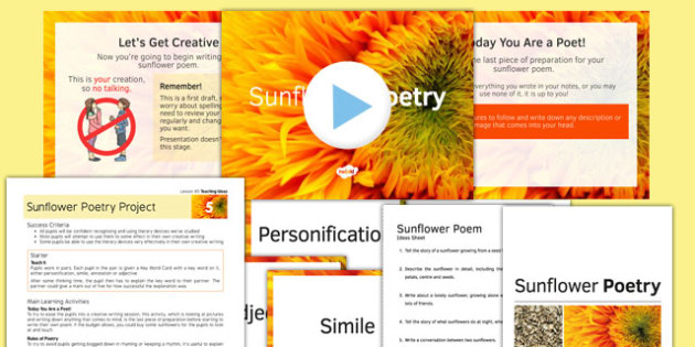 Sunflower Poetry Project Teaching Pack: Lesson 5 - poetry, lesson