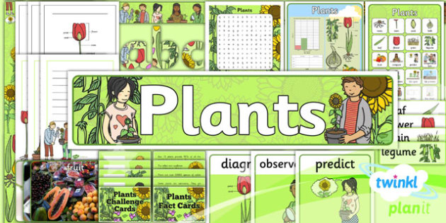 Science: Plants Year 2 Unit: Additional Resources