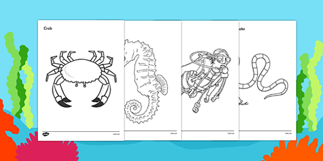 Under the Sea Colouring Sheets - Under the sea, underwater, sea, seaside, activity, posters, colouring, fine motor skills, water, tide, fish, sea creatures, shark, whale, marine, dolphin, starfish, waves, sand