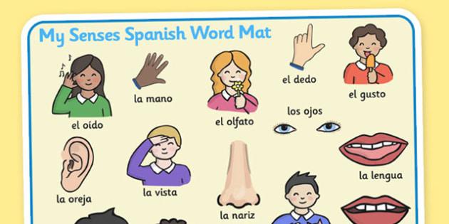 My Senses KS1 Body Parts Word Mat Spanish - word mat, senses