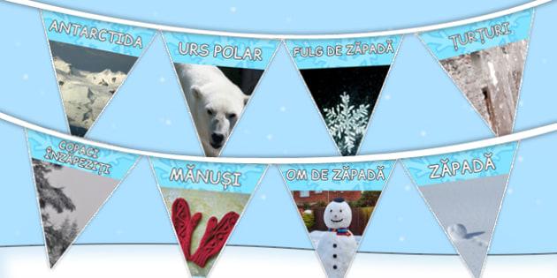 Iarna, Stegulete decorative cu fotografii de sezon