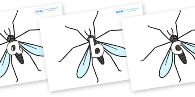 Phase 2 Phonemes on Crane Flies - Phonemes, phoneme, Phase 2, Phase two, Foundation, Literacy, Letters and Sounds, DfES, display