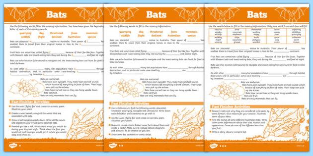 Australian Animals Years 3-6 Bats Differentiated Cloze Passage Activity Sheet - australia, animals, 2-6, bats, differentiated, cloze passage, activity, worksheet