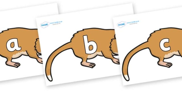 Phase 2 Phonemes on Hamsters - Phonemes, phoneme, Phase 2, Phase two, Foundation, Literacy, Letters and Sounds, DfES, display