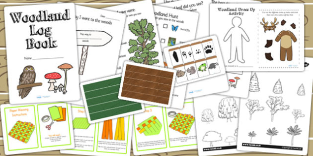 Forest and Woodland Activity Pack - woods, nature, activities