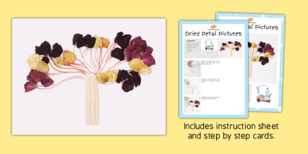 Dried Petal Pictures Craft Instructions - dried, petal, craft