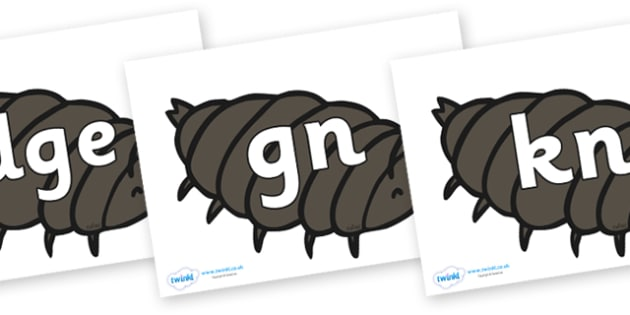Silent Letters on Woodlice - Silent Letters, silent letter, letter blend, consonant, consonants, digraph, trigraph, A-Z letters, literacy, alphabet, letters, alternative sounds