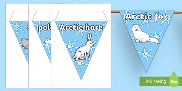 Polar Regions Bunting - polar, bunting, polar region, display