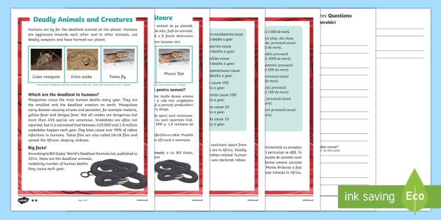 Deadly Animals and Creatures Differentiated Reading Comprehension Activity English/Romanian