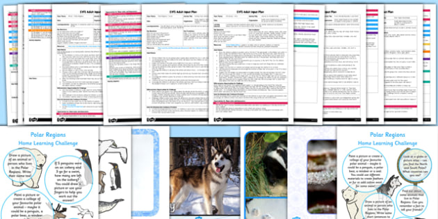 EYFS Polar Regions Adult Input Planning and Resource Pack - EYFS, early years planning, winter, frozen