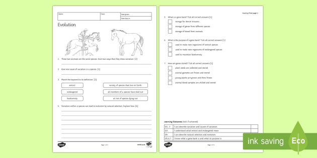 Evolution Homework Activity Sheet - Homework, variation ,evolution, darwin, natural selection, genes, species, gene, specie, offspring,