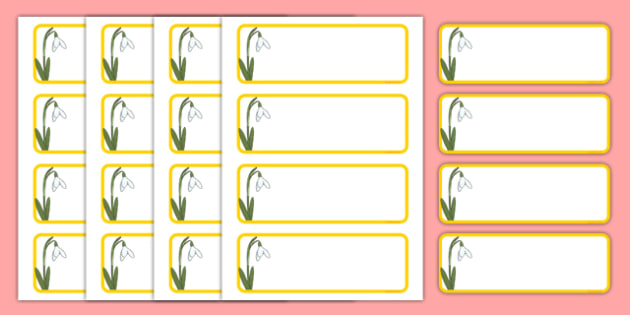 Snowdrop Themed Editable Drawer-Peg-Name Labels (Blank) - Themed Classroom Label Templates, Resource Labels, Name Labels, Editable Labels, Drawer Labels, Coat Peg Labels, Peg Label, KS1 Labels, Foundation Labels, Foundation Stage Labels, Teaching Lab