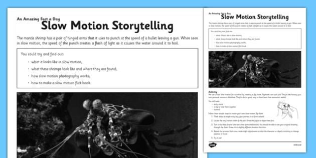 Mantis Shrimp Slow Motion Storytelling Amazing Fact Activity Sheet - flick book, slow motion, story, worksheet