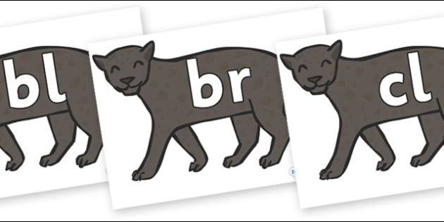Initial Letter Blends on Panthers - Initial Letters, initial letter, letter blend, letter blends, consonant, consonants, digraph, trigraph, literacy, alphabet, letters, foundation stage literacy