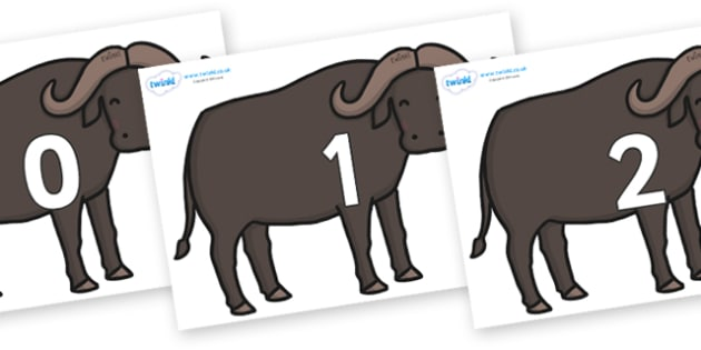 Numbers 0-31 on Buffalos - 0-31, foundation stage numeracy, Number recognition, Number flashcards, counting, number frieze, Display numbers, number posters