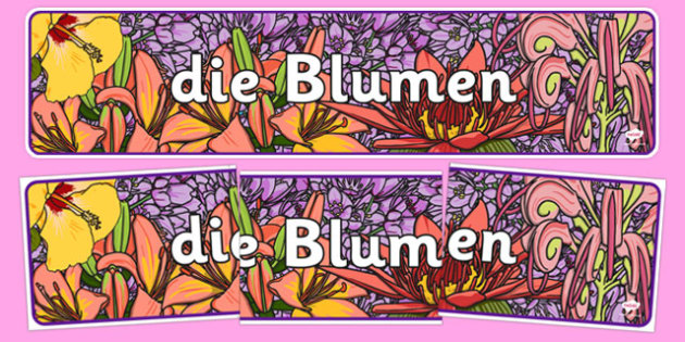 Flowers Display Banner German - german, plants, flower, header, display, international, primary, curriculum