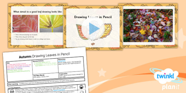 Art: Autumn: Drawing Leaves in Pencil LKS2 Lesson Pack 1