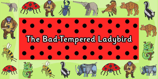 Display Borders to Support Teaching on The Bad Tempered Ladybird - border, stories, book