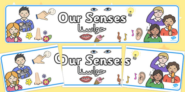 Our Senses Display Banner Arabic Translation - arabic, our senses