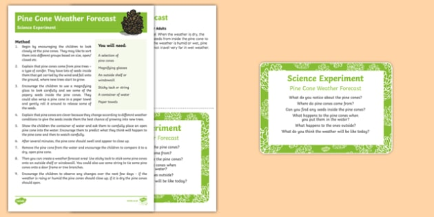 EYFS Pine Cone Weather Forecast Science Experiment and Prompt Card Pack - EYFS, Early Years, woods, forests, woodlands, parks, animals, nature, wildlife, British wildlife, weather, autumn