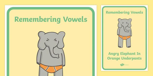 Remembering Vowels Display Posters - vowels, remember, remembering, poster, display, sign, banner