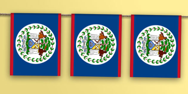 Belize Flag Bunting - belize flag, belize, flag, display bunting, display, bunting