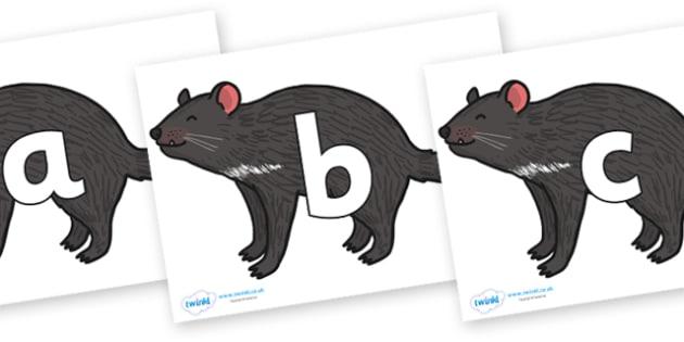 Phoneme Set on Tasmanian Devil - Phoneme set, phonemes, phoneme, Letters and Sounds, DfES, display, Phase 1, Phase 2, Phase 3, Phase 5, Foundation, Literacy