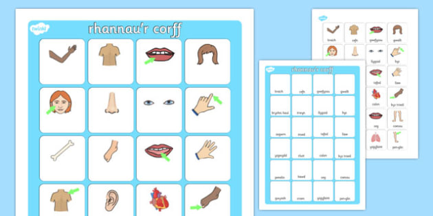 My Body Vocabulary Matching Mat Cymraeg - welsh, cymraeg, my body, vocabulary poster, poster, my body vocabulary, display poster, information poster, poster for display