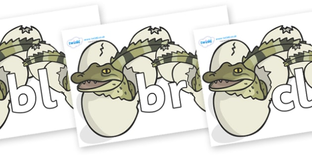 Initial Letter Blends on Hatching Aligators - Initial Letters, initial letter, letter blend, letter blends, consonant, consonants, digraph, trigraph, literacy, alphabet, letters, foundation stage literacy