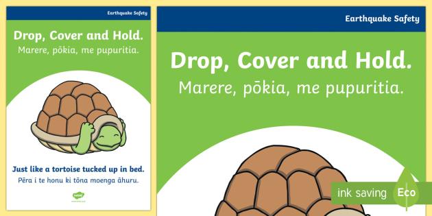 Earthquake. Drop, cover and hold. A4 Display Poster - earthquake, safe walls, ruaumoko, turtles