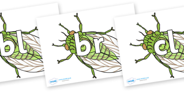 Initial Letter Blends on Cicada - Initial Letters, initial letter, letter blend, letter blends, consonant, consonants, digraph, trigraph, literacy, alphabet, letters, foundation stage literacy