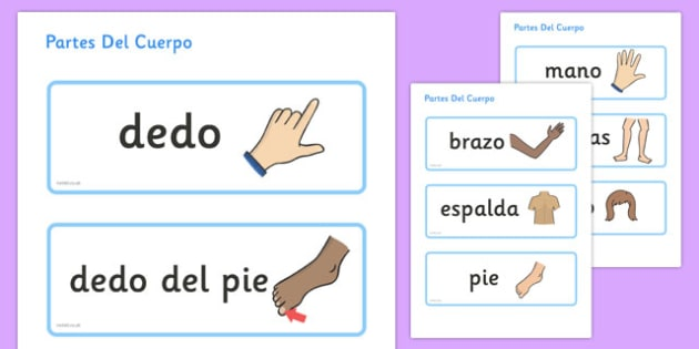 Partes Del Cuerpo Topic Word Cards Spanish - spanish, parts, body, topic, word, cards